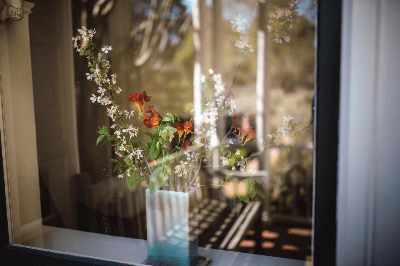 Kwiat stojący na parapecie, ozdabiający wnętrze domu